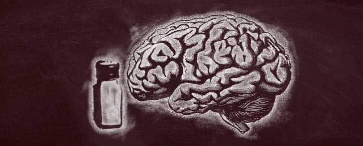 EXCESS SALT HARMS THE BRAIN